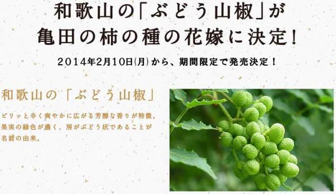 柿の種-ぶどう山椒味01