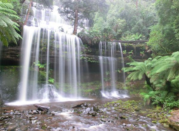 タスマニア-マウントフィールド国立公園01