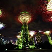 シンガポール観光最終日。チリクラブ・リバークルーズ・マリーナベイサンズのライトアップからのスーパーツリー