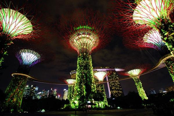 シンガポール・ガーデンズバイザベイのスーパーツリー