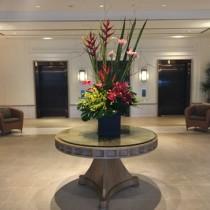 ケアンズのプルマンリーフホテルカジノに宿泊。カジノは24時間じゃないので注意