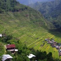 コルディリェーラの棚田群への行き方!フィリピンの世界遺産ライステラス
