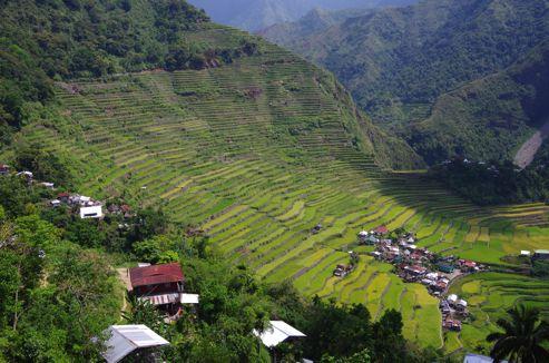 フィリピンの世界遺産「コルディリェーラの棚田 群」への行き方12