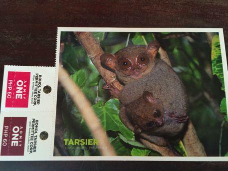ターシャのポストカードが入場券になっています