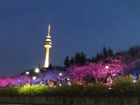 大邱タワー01