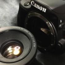 Canonの単焦点レンズ「EF50 F1.8 STM」写真作例。背景ボケも簡単で初心者におすすめ