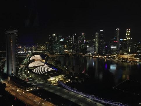 シンガポールフライヤーからマリーナベイサンズの眺め