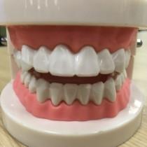 普通の歯ブラシと電動歯ブラシの違いを比較