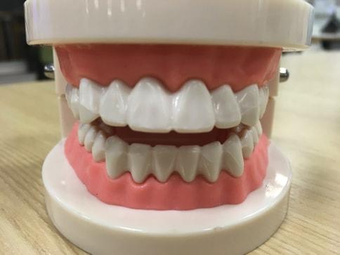 食事後すぐに歯磨きはNG?普通の歯ブラシと何が違う?電動歯ブラシの正しい使い方@オムロン