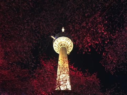 大邱タワー02
