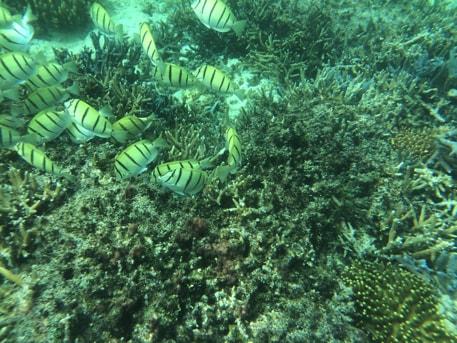 波照間島のニシ浜ビーチ