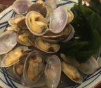 アサリが多すぎてうどんが見えない。丸亀製麺「春のあさりうどん」を試食